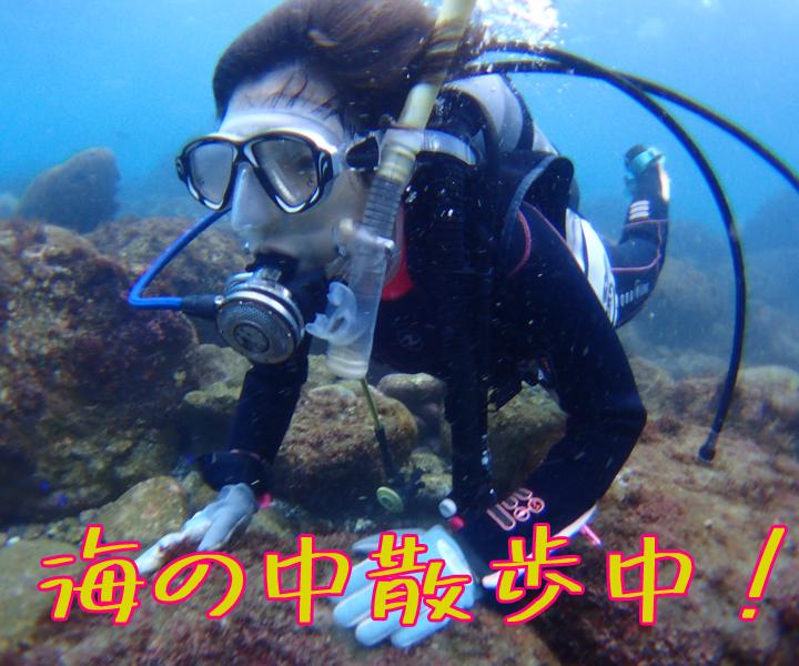 海の中散歩中!!